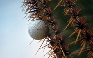 Gold Canyon golf and other attractions